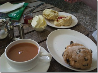 National Trust wonderful cream tea at Greenway, Devon