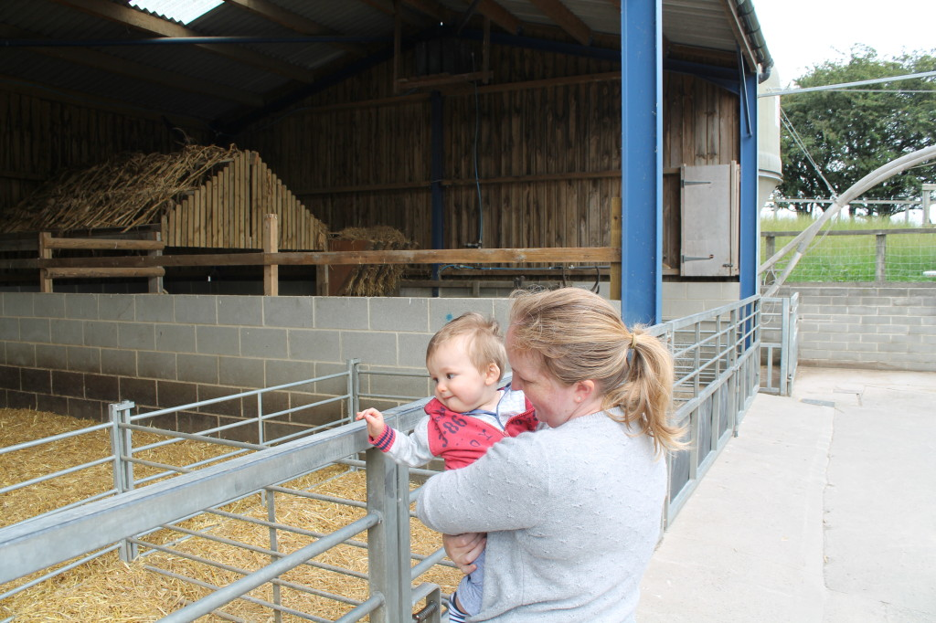 Thomas and mummy looking at the animals